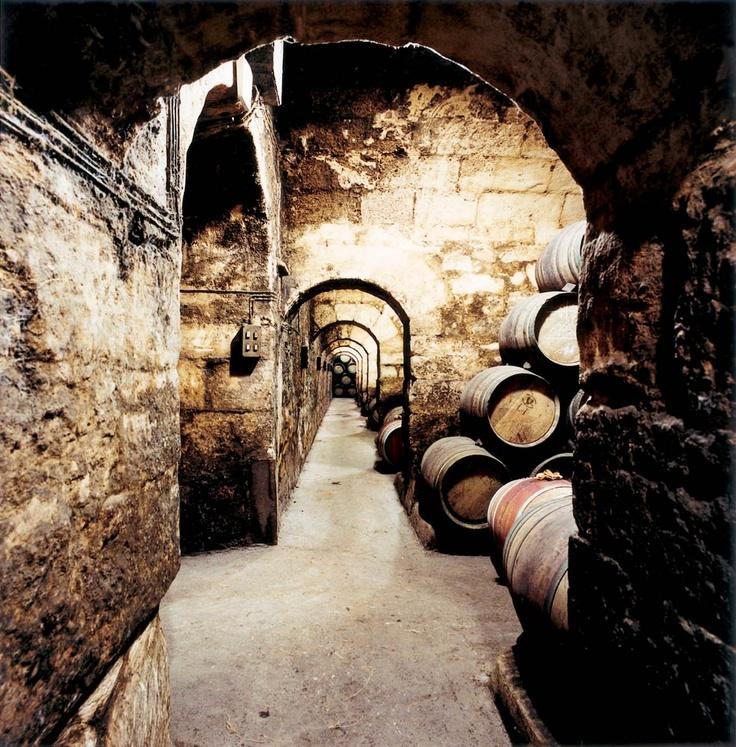 #Rioja wine cellar