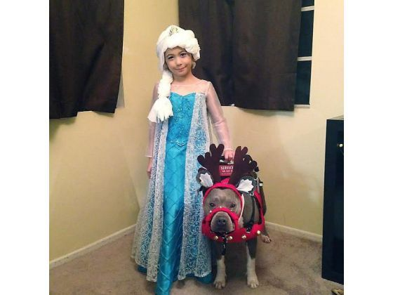Abcde Santos and Pup-Cake, her service dog stood in line for 30 minutes to see Santa Claus on Sunday, said Julie Miller, a family friend and service animal advocate. They were turned away.
