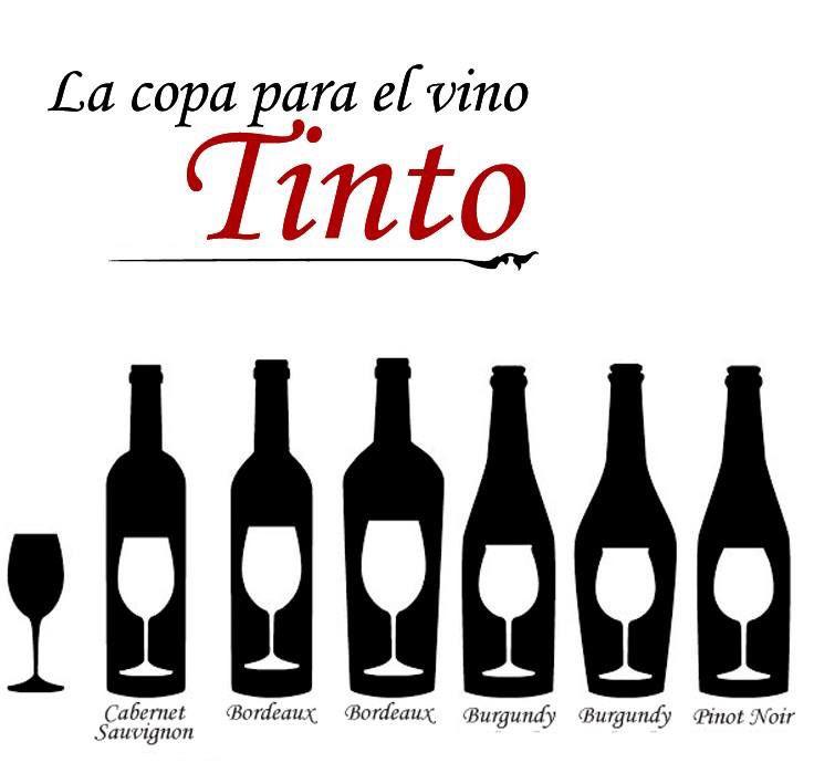 8 best images about copas on pinterest ea posts and salud for Tipos de copas