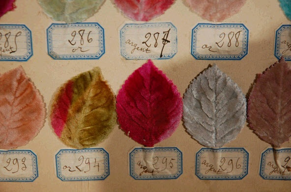 A framed collection of velvet leaves used by milliners as color samples at the beginning of the 20th century.