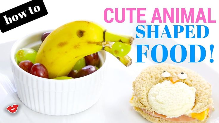 How To: Cute Animal Shaped Food   Food Art   Alison from Millennial Moms