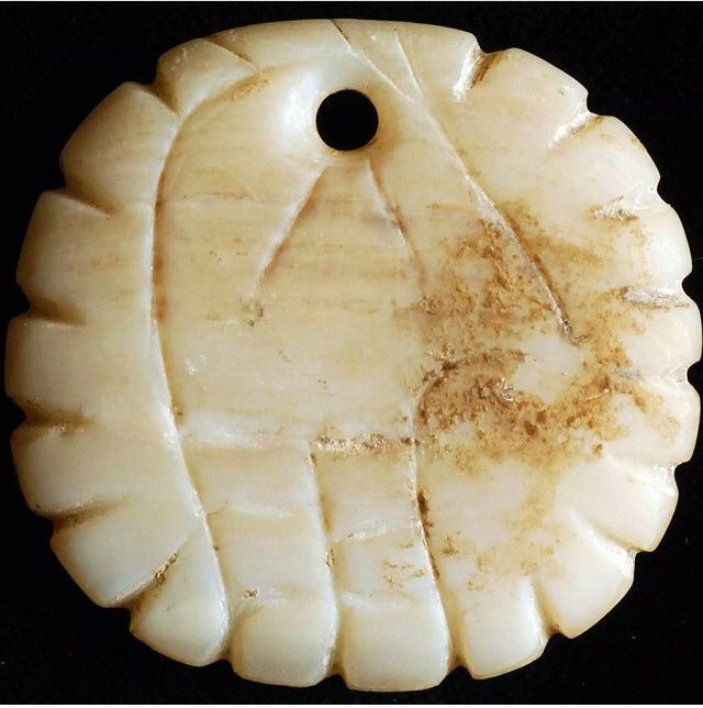 Ancient Native American shell gorget pendant with incised bird motif. Mills County Ohio.