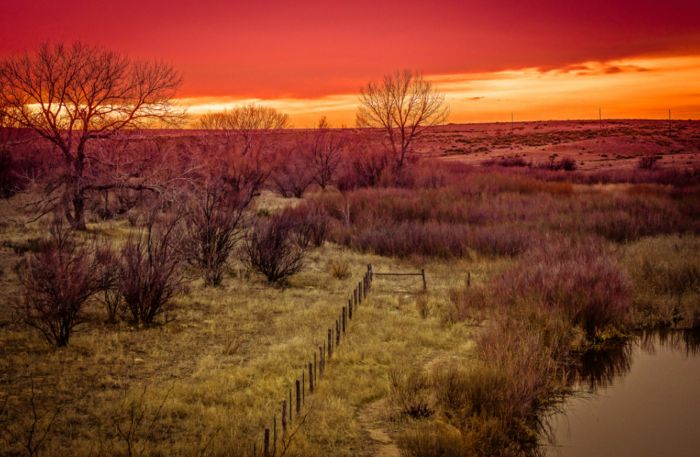 1. The Panhandle occupies nearly all of the true High Plains within the Sooner State.