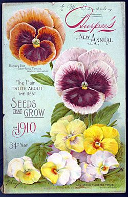 Vintage Seed Packet: Vintage Seeds Packets, Art Crafts, Burp Seeds, Seed Packets, Pansies, Seedpacket, Packets Printable, Seeds Catalog, Vintage Flowers