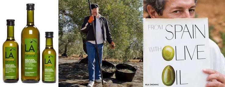 Aceite de oliva extra ecológico, el verdadero oro líquido