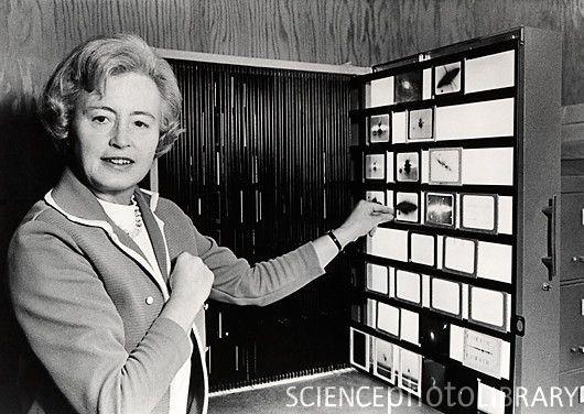 MARGARET BURBIDGE: es una astrónoma inglesa, ganadora del Premio Mundial de Ciencia Albert Einstein. Trabajó como directora interina del observatorio de la Universidad de Londres. Fue una de las principales desarrolladoras del Telescopio espacial Hubble. Conjuntamente con su esposo, hizo notables contribuciones a la teoría de los quásares y al entendimiento de como los elementos son formados en el interior de las estrellas mediante fusión nuclear.