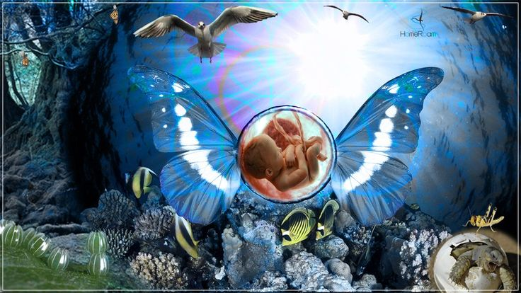 http://www.homeroam.info/human-life-eternal-religion/