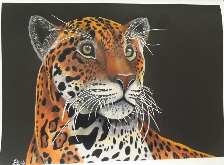 Jaguar Page 22 By Elizabeth C