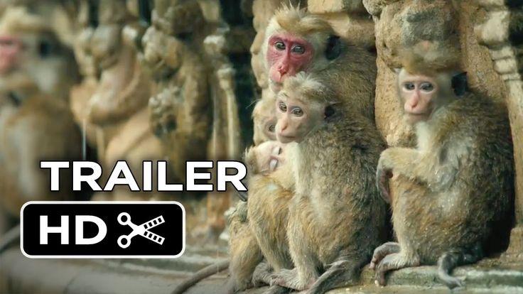Monkey Kingdom Official Trailer #1 (2015) - Disneynature Documentary HD