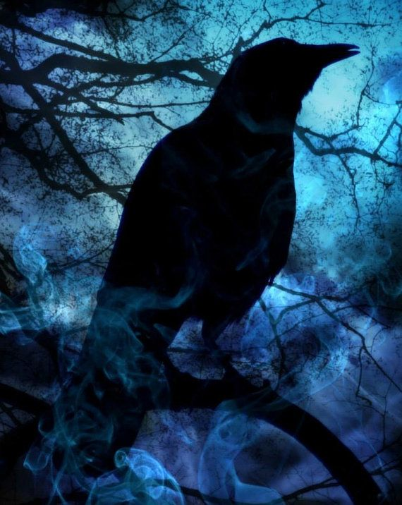 8x10 Blue Mist Crow, Veilwalker of Thousand Steps, Gothic Photography, Halloween Photography, Fine Art Photography