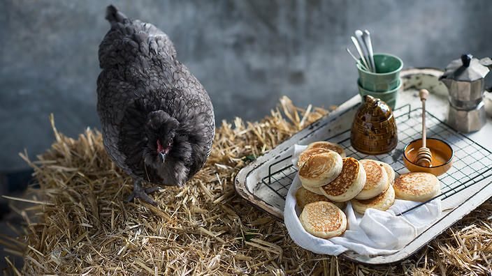 It's ideal to use proper crumpet rings for these, but egg rings will work just fine too – they are just smaller so you'll take longer to cook the crumpets. Matthew Evans, Gourmet Farmer Series 4