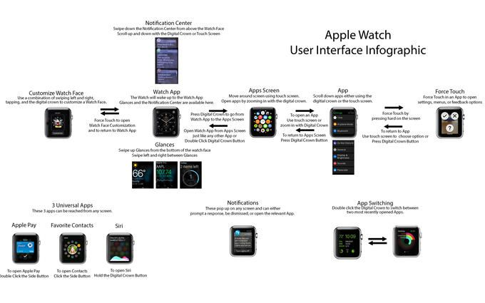 User Interface Infographic