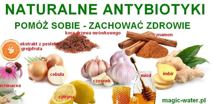 naturalne antybiotyki 1