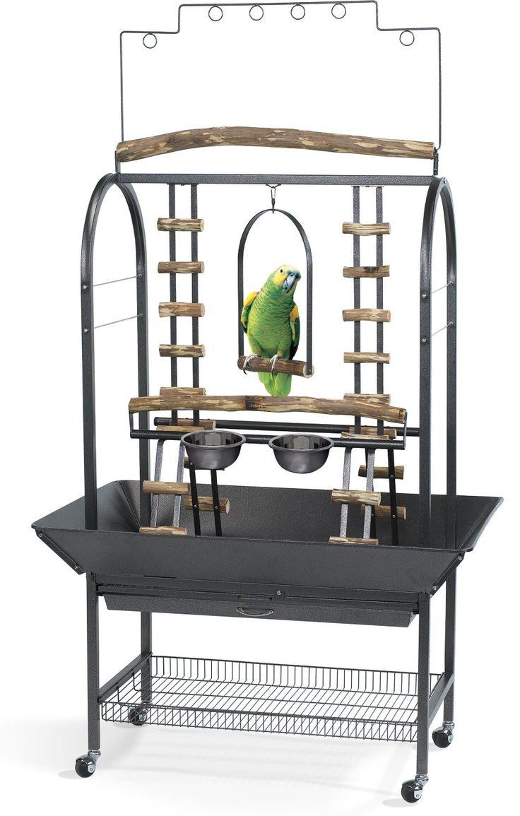 Amazon.com : Kaytee EZ Care Activity Center Playground for Medium and Large Birds : Pet Supplies