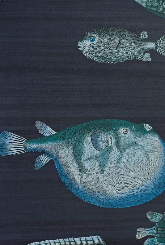 Acquario Wallpaper Black brush stripe wallpaper with tropical fish print in vibrant aquas.