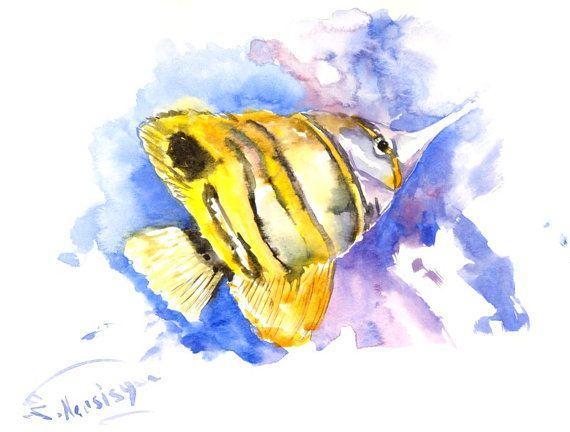 Copperhead Angelfish, 12 X 9 in, original watercolor ...