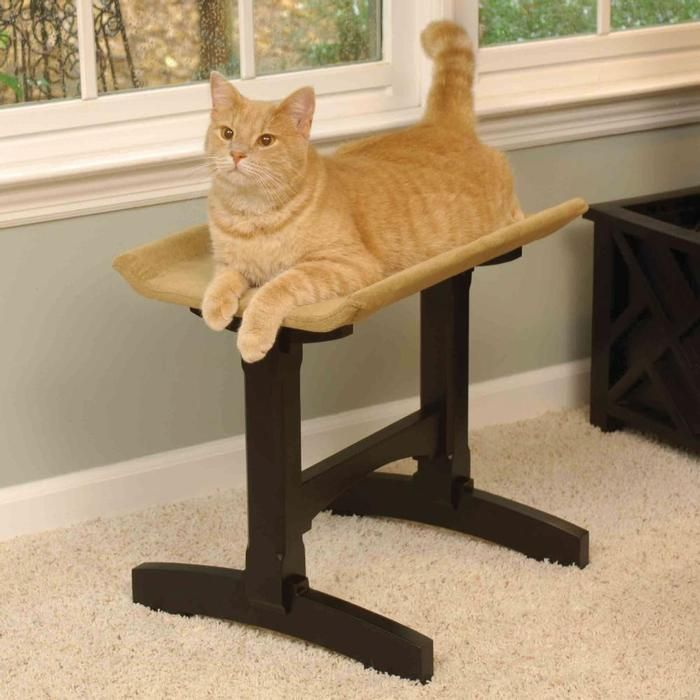 Pet furniture that looks good to you and your cat.