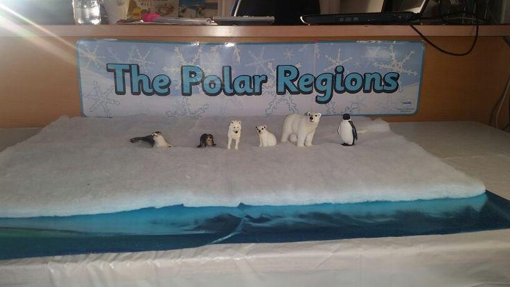 Polar Small World