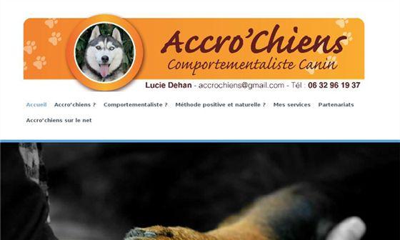 Accro'chiens - Comportementaliste canin en Vendée     - La Copechagnière, Vendée, Pays de la Loire