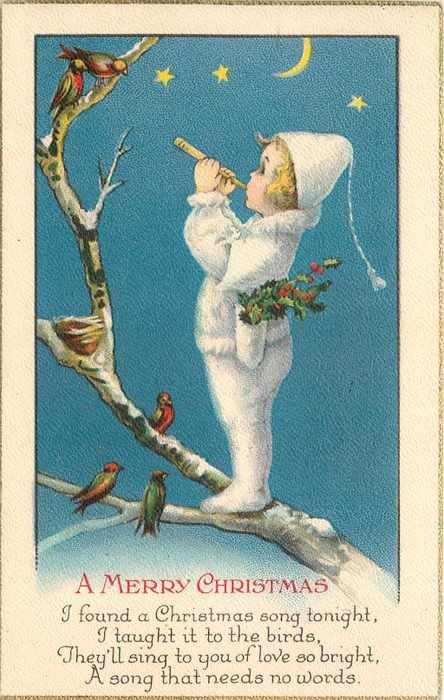 Pin by JENNY ENVY on Christmas cards | Pinterest ...