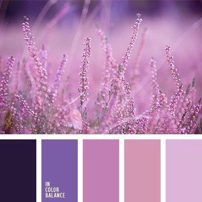 50 shades of purple