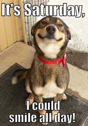 Bildergebnis für happy weekend animal pics