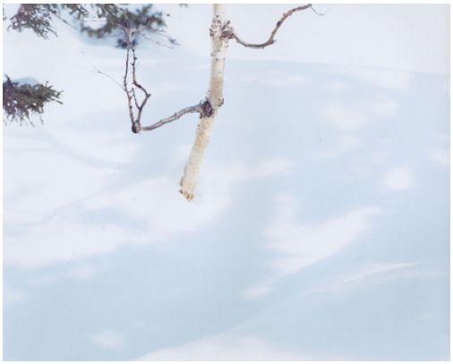 Risaku Suzuki - WHITE, 07, H-88 | Christophe Guye Galerie