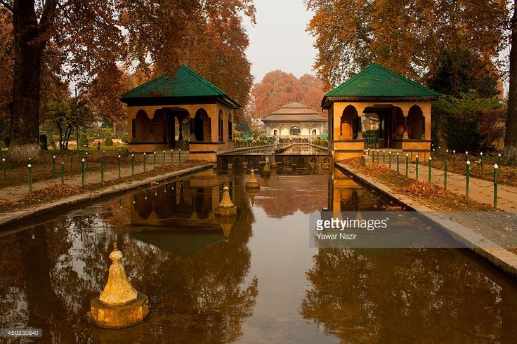 A view of Chinar autumn trees in the Shalimar garden during the autumn season on November 18, 2014 in Srinagar, the summer capital of Indian administered Kashmir, India. Trees are changing colour and the days are becoming shorter heralding the approach of winter in Kashmir.