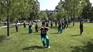 Five Animals Qi Gong for Children