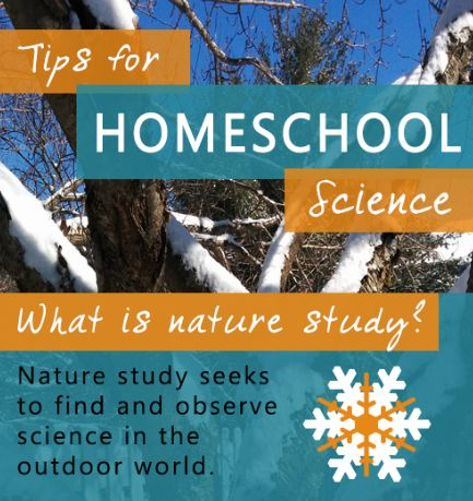 Here is a quick way to study nature while enjoying the warmth of your home!
