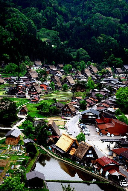 Historic Villages of Shirakawa-go, Gifu, Japan  This definitely looks like a fantasy setting- I think we r going here!