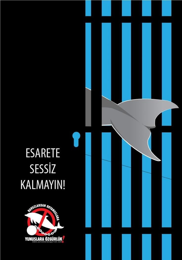 """Tasarımcı Baykuş""tan tutsak yunuslara destek...     http://www.yunuslaraozgurluk.com/sites/default/files/Tasar%C4%B1mc%C4%B1Baykus%CC%A7_hapishane.jpg - Freedom, dolphins, anti-captivity"