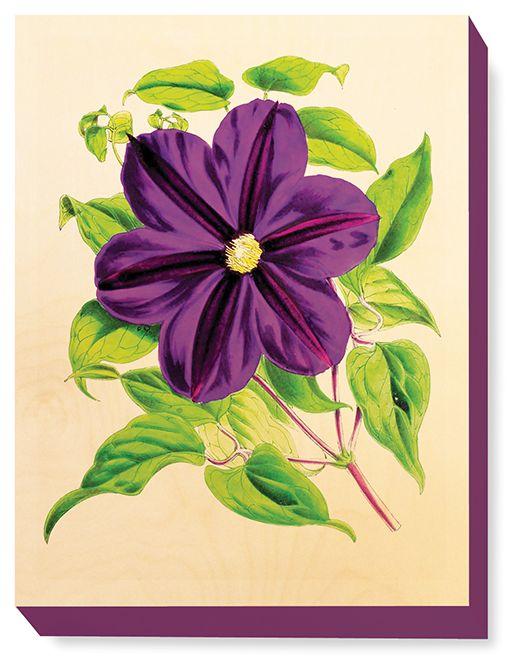 FLW 036 Vintage Flower