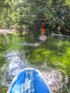 Stand Up Paddle Boarding, Port Douglas, Queensland, Australia