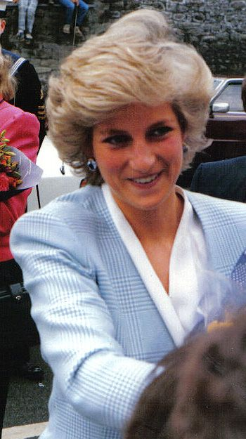 Killing Princess Diana Some say the death of Princess Diana in 1997 was actually a murder plotted by her government.