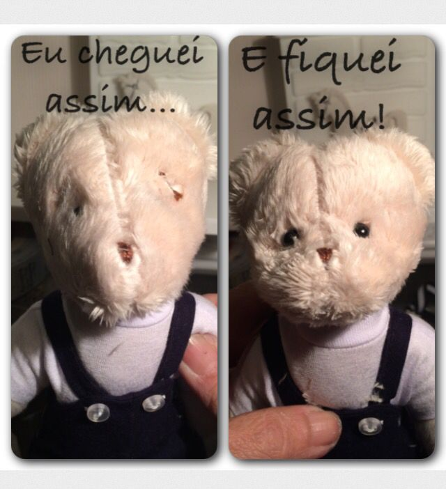 Os ursos chegam com um rostinho e os transformo!!!