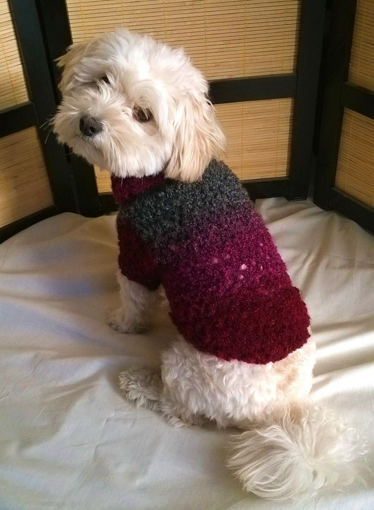 dog sweater dog coat dog sweater small dog by HappyDogLucky