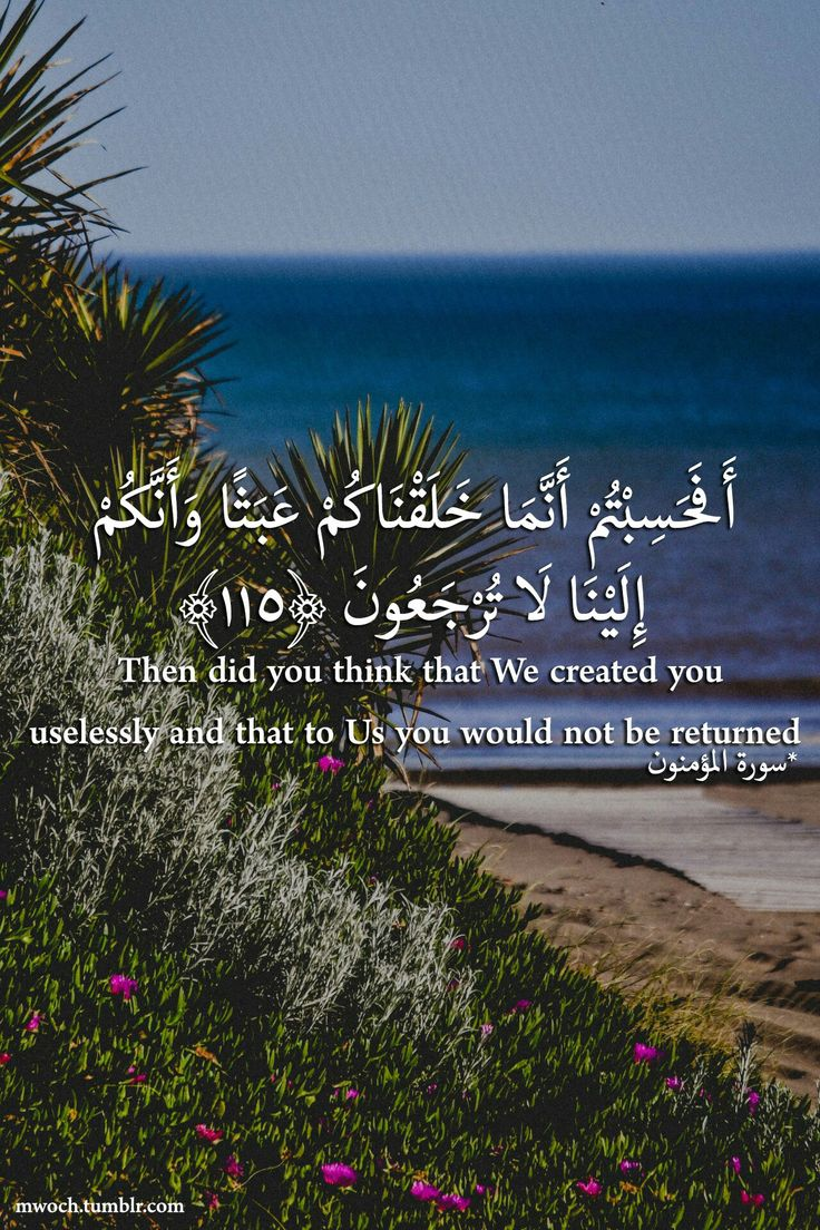 Then did you think that we created you uselessly and that to us you would not be returnned.