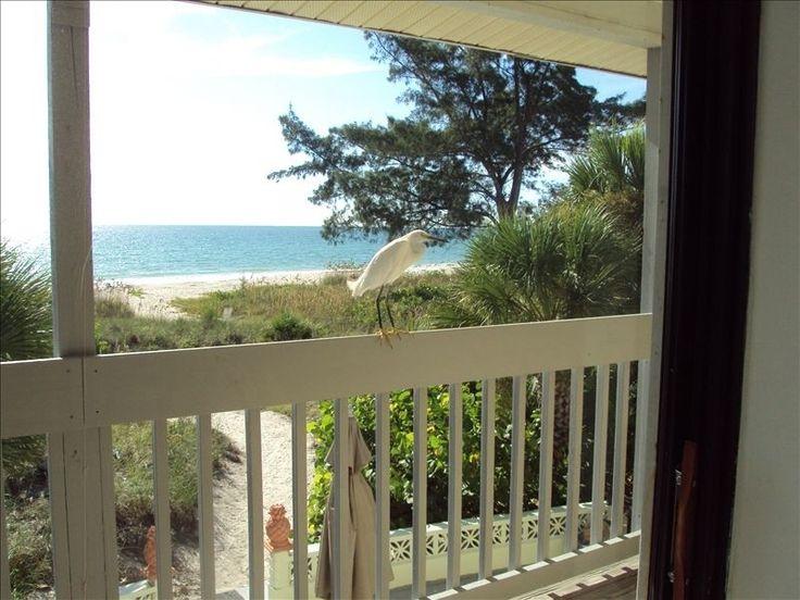 Condo vacation rental in Casey Key from VRBO.com! #vacation #rental #travel #vrbo