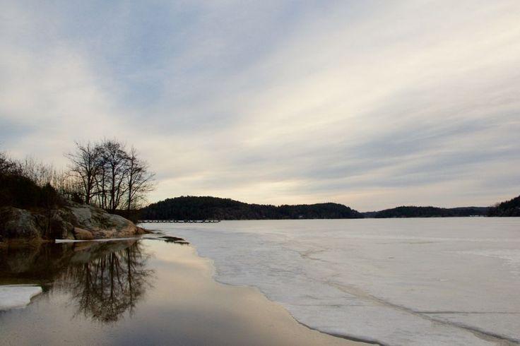 afternoon by Cecilie Hansteensen