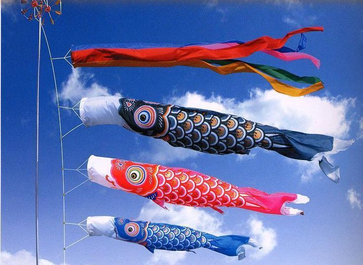 Koinobori meaning carp streamer in japanese are carp for What does carp mean