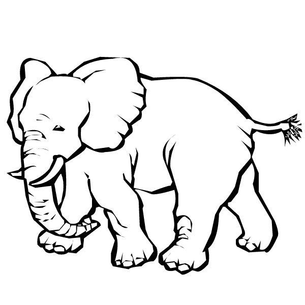 24 best y Blank Pattern Elephants images on Pinterest | Elefantes ...