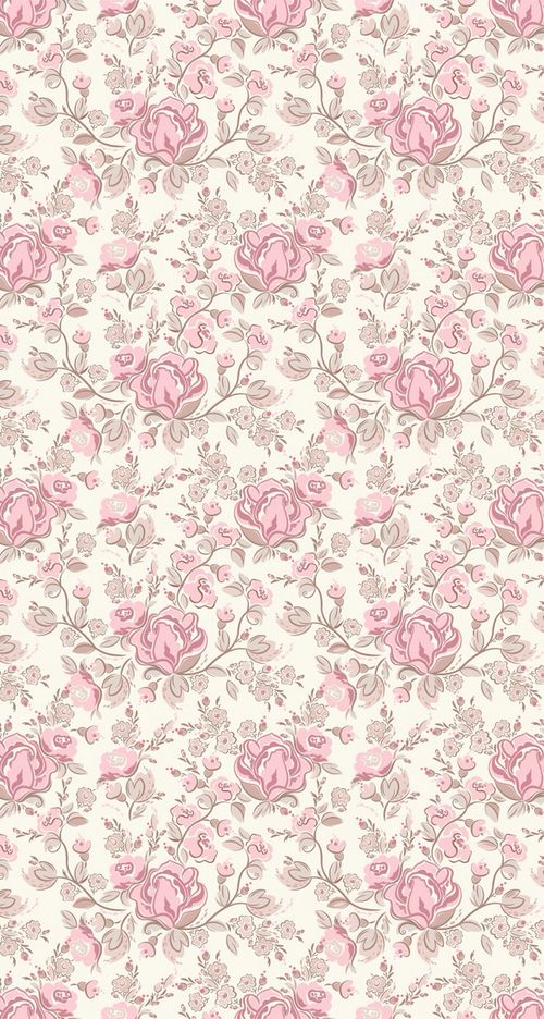 pretty pink roses on white background.