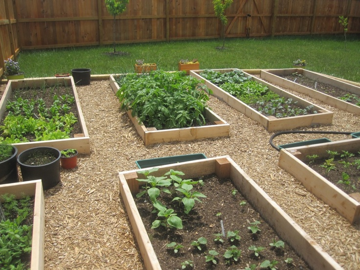 box gardening ideas cadagucom