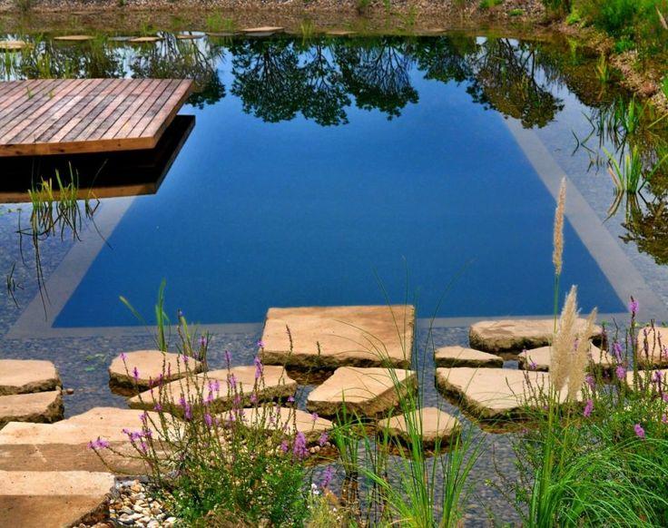 Stawy kąpielowe- naturalna filtracja i dobór roślin
