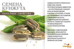 Семена кунжута - полезные свойства
