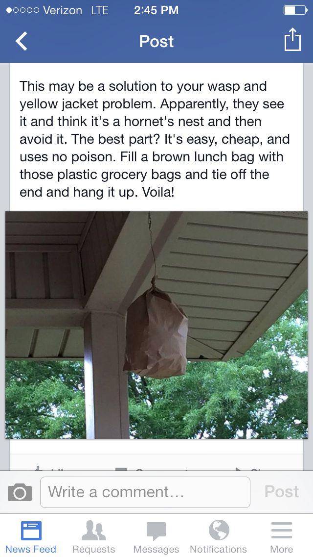 Wasp deterrent