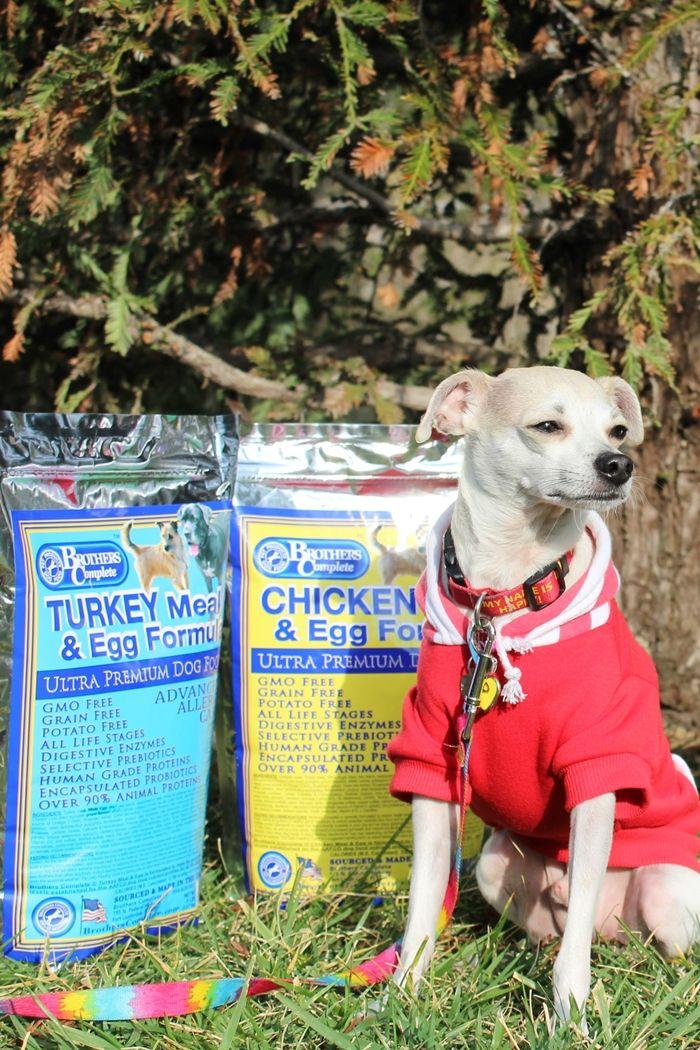 Dog Food Giveaway! Happy Discovers Brother's Complete Ultra Premium Dog Food! + Review   HAPPY HAZEL @marisakomarek