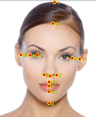 A Model's Secrets: The Perfect Face - Golden Ratio Beauty Calculator