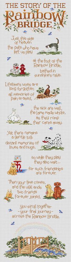 31 best Cats -:Memory Quotes & pics - Rainbow Bridge ...